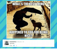 Memes, Forbes, and Harambe: WHATS THE BEST THING  HAPPENED TO YOU FORBEING  NICE?  MEMEFUL COM  harambelives 2586 points 14h  I got shot.  Reply Harambe </3