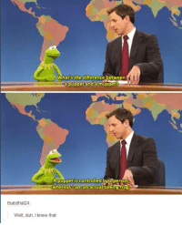 Funny, Tumblr, and Control: What's the difference between  puppet and a muppet?  A puppet is controlled person  whereas Dam an actual talking irog.  thatsthat24  Well, duh, knew that