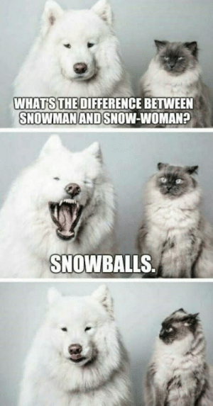 laughoutloud-club:  Fluffy ones: WHATS THE DIFFERENCE BETWEEN  SNOWMAN AND SNOW-WOMAN?  SNOWBALLS laughoutloud-club:  Fluffy ones