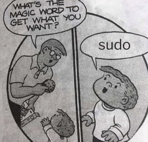 sudo: WHAT'S THE  MAGIC WORD TO  GET WHAT YOU  WANT?  sudo sudo