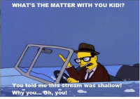 "Memes, Homer, and 🤖: WHAT'S THE MATTER WITH YOU KID!?  You told me this stream was shallow!  Why you... Oh, you ""Homer the Vigilante""  (S5E11)"