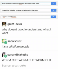 God, Google, and Ironic: whats the spot on the worm thats not like the rest of the worm  the spot that looks like someone put a bandaid on the worm  u kno the worm bandaid  great-deku  why doesnt google understand whati  want  snowsdust  it's a clitellum people  sunandblaketho  WORM CLIT WORM CLIT WORM CLIT  Source: great-deku I cannot believe how hard I laughed @ this oh my God my forehead veins were probably poking out