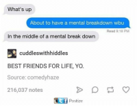 What's up  About to have a mental breakdown wbu  Read 9:18 PM  In the middle of a mental break down  cuddles withhiddles  BEST FRIENDS FOR LIFE, YO.  Source: comedyhaze  216,037 notes  Etf Postize