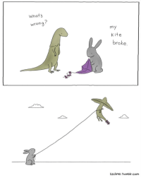 Another Liz Climo comic :): Whats  wrong  my  Kite  broke  lizclimo.tumblr.com Another Liz Climo comic :)