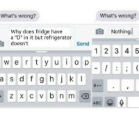 "Whats Wrong Nothing: What's wrong?  What's wrong?  Nothing  Why does fridge have  a ""D"" in it but refrigerator  doesn't  Send  12 3 4 5  w e r ty u o p  a  s d f g hj k I  ABC"