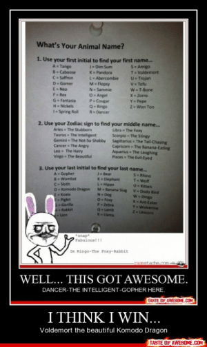 I Think I Win…http://omg-humor.tumblr.com: What's Your Animal Name?  1. Use your first initial to find your first name..  S- Amigo  T= Voldemort  U- Trojan  V= Tofu  W = T-Bone  A= Tango  J= Dim Sum  B- Caboose  K= Pandora  L- Abercombie  M= Flopsy  N- Sammie  O- Angel  P- Cougar  Q- Ringo  C= Saffron  D= Gomer  E= Neo  X Zorro  F Rex  Y= Pepe  Z= Won Ton  G- Fantasia  H= Nickels  I= Spring Roll  R= Dancer  2. Use your Zodiac sign to find your middle name..  Libra = The Foxy  Scorpio = The Stingy  Sagittarius - The Tail-Chasing  Capricorn = The Banana-Eating  Aquarius - The Laughing  Pisces The Evil-Eyed  Aries = The Stubborn  Taurus The Intelligent  Gemini = The Not-So-Shabby  Cancer The Angry  Leo- The Hairy  Virgo = The Beautiful  3. Use your last initial to find your last name.  S- Rhino  T-Wolf  U- Kitten  V- Dodo Bird  W Dingo  X- Ant-Eater  Y- Wolverine  2-Unicorn  J- Bear  K-Elephant  L-Hippo  M-Banana Slug  N- Dog  7-Foxy  P Zebra  Q-Lamb  R-Llama  A- Gopher  B- Wombat  C- Sloth  D- Komodo Dragon  E- Koala  F-Piglet  SGorilla  Rabbit  Lion  *anap  Fabulous!!!  Im Ringo-The Foxy-Rabbit  WELL... THIS GOT AWESOME.  DANCER-THE INTELLIGENT-GOPHER HERE.  TASTE OF AWESOME.COM  I THINK I WIN...  Voldemort the beautiful Komodo Dragon  TASTE OF AWESOME.COM I Think I Win…http://omg-humor.tumblr.com
