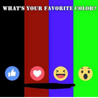 What Is Your Favorite Color: WHAT'S YOUR FAVORITE COLOR?
