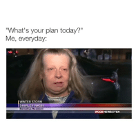 "omg: ""What's your plan today?""  Me, everyday:  WINTER STORM  SHIRLEY NASH  Cornelius Resident  WCCB NEWS@TEN omg"