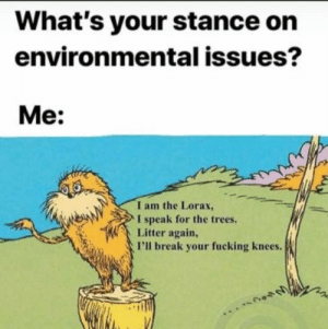 meirl: What's your stance on  environmental issues?  Me:  I am the Lorax,  I speak for the trees.  Litter again,  I'll break your fucking knees. meirl
