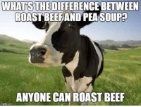 WHATSTHE DIFFERENCE BETWEEN  ROAST BEEFAND PEA SOUPE  ANYONE CAN ROAST BEEF Let that beef stew a bit.  #UnKNOWN_PUNster