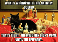No gospel account describes the Nativity in this way!: WHATSWRONG WITH THIS NATIVITY  SCENE?  THATS RIGHT COME  UNTIL THE EPIPHANY. No gospel account describes the Nativity in this way!
