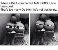 Bae, Bitch, and Memes: When a Bitch comments LMAOOOOOO on  baes post.  That's too many Os bitch he's not that funny.  GNorthWitch6