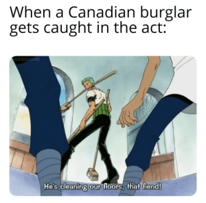 The Act: When a Canadian burglar  gets caught in the act:  HISSAHIME  He's cleaning our floors, that fiend!