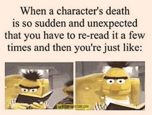 Tumblr, Blog, and Death: When a character's death  is so sudden and unexpected  that you have to re-read it a few  times and then you're just like:  VIA THEMETAPICTURE.COM srsfunny:So Sudden And Unexpected