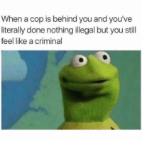 Funny, Criminal, and Cop: When a cop is behind you and you've  literally done nothing illegal but you still  feel like a criminal 👀