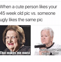Cute, Lol, and Memes: When a cute person likes your  45 week old pic vs. someone  ugly likes the same pic  bloPiqasso  NFOLLOW ME  That makes me moist  RIGHT NOW You make me moist lol who uses that word outside of a cake description .. teamfuckyotimeline