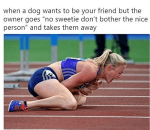 """Nice, Dog, and Friend: when a dog wants to be your friend but the  owner goes """"no sweetie don't bother the nice  person"""" and takes them away Right in the feels"""