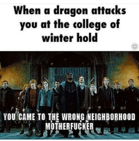 I had to hide in the college of winter hold because my first encounter of a legendary dragon had come and attacked me...😶it was horrible. skyrim memes dragonborn archery arrowintheknee specialedition randomness totalnerds collegeofwinterhold crypts draugr daedric allthatjazz: When a dragon attacks  you at the college of  winter hold  YOU CAME TO THE WRONG NEIGHBORHOOD  MOTHERFUCKER I had to hide in the college of winter hold because my first encounter of a legendary dragon had come and attacked me...😶it was horrible. skyrim memes dragonborn archery arrowintheknee specialedition randomness totalnerds collegeofwinterhold crypts draugr daedric allthatjazz