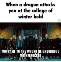 Credit: @skyrim_memes_daily • elderscrolls theelderscrolls elderscrollsv theelderscrollsv skyrim gaming game games rpg dovahkiin dragonborn bethesda harrypotter collegeofwinterhold winterhold: When a dragon attacks  you at the college of  winter hold  YOU CAME TO THE WRONG NEIGHBORHOOD  MOTHERFUCKER Credit: @skyrim_memes_daily • elderscrolls theelderscrolls elderscrollsv theelderscrollsv skyrim gaming game games rpg dovahkiin dragonborn bethesda harrypotter collegeofwinterhold winterhold