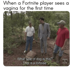 Wtf, Time, and Vagina: When a Fortnite player sees a  vagina for the first time  u/paolonoci  What type of dog is this?  This is a tortoise  Womarn  sound Wtf is that