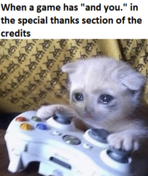 """Game, Irl, and Me IRL: When a game has """"and you."""" in  the special thanks section of the  credits Me irl"""