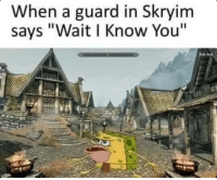 """Skyrim guards know everyone huh?: When a guard in Skryim  says """"Wait l Know You"""" Skyrim guards know everyone huh?"""