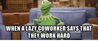 Kermit the Frog, Lazy, and Work: WHEN A LAZY COWORKER SAYS THAT  THEY WORK HARD