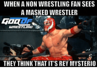 Memes, Rey, and Rey Mysterio: WHEN A NON WRESTLING FAN SEES  A MASKED WRESTLER  WRESTLING  THEY THINK THATIT'S REY MYSTERIO Damn casuals prowrestling professionalwrestling reymysterio wwe wwenxt wweraw wwefans wwenews wwememes wwewrestling wweworldheavyweightchampion wwesuperstars wweuniverse wwenetwork wweuniversalchampionship wrestler wrestlers wrestling wrestlemania wrestlemania33 wrestlingmemes worldwrestlingfederation worldwrestlingentertainment
