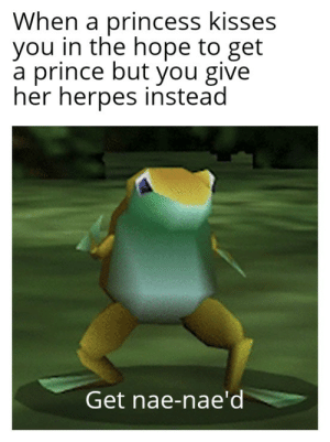 Herpes, Prince, and Reddit: When a princess kisses  you in the hope to get  a prince but you give  her herpes instead  Get nae-nae'd Results will revealed later