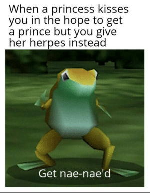 Herpes, Prince, and Princess: When a princess kisses  you in the hope to get  a prince but you give  her herpes instead  Get nae-nae'd Your reward