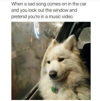 Memes, 🤖, and Car: When a sad song comes on in the car  and you look out the window and  pretend you're in a music video  rapist Says I don't care if you're a 14 year old bisexual emo kid who hates his dad or a 6-foot-10 Crip who thinks prison is relaxing, this is what happens when you listen to Adele. (@mytherapistsays)