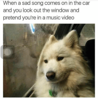 "Memes, Music, and Video: When a sad song comes on in the car  and you look out the window and  pretend you're in a music video <p>Sad song music video via /r/memes <a href=""https://ift.tt/2Hi4iNH"">https://ift.tt/2Hi4iNH</a></p>"