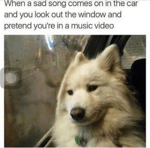 Music, Video, and Sad: When a sad song comes on in the car  and you look out the window and  pretend you're in a music video meirl