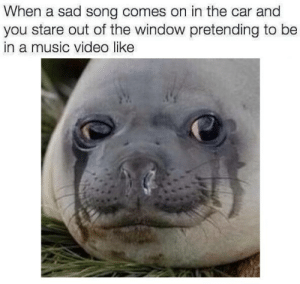 https://t.co/19X1pZcHRF: When a sad song comes on in the car and  you stare out of the window pretending to be  in a music video like https://t.co/19X1pZcHRF