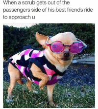 NO I don't want your number. 👋🏽 ( rp follow ➡️ @the_mermaid_lagoon 👙): When a scrub gets out of the  passengers side of his best friends ride  to approach u NO I don't want your number. 👋🏽 ( rp follow ➡️ @the_mermaid_lagoon 👙)
