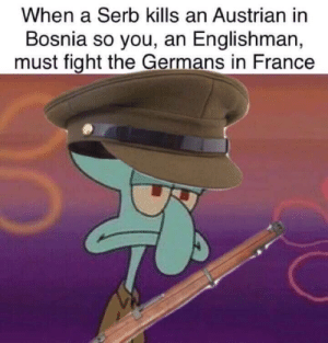 Duke, France, and Austrian: When a Serb kills an Austrian in  Bosnia so you, an Englishman,  must fight the Germans in France The arch duke doomed us all​
