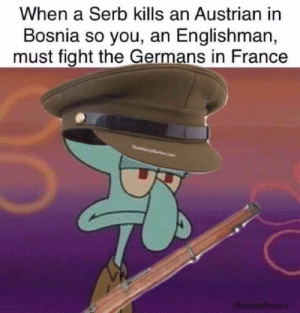 France, Austrian, and Bosnia: When a Serb kills an Austrian in  Bosnia so you, an Englishman,  must fight the Germans in France