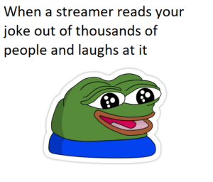 Keep Being Yourself: When a streamer reads your  joke out of thousands of  people and laughs at it Keep Being Yourself
