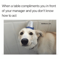 "Ass, Life, and Memes: When a table compliments you in front  of your manager and you don't know  how to adt  IG:@Server Life Then you hit them with that corny ass line, ""I paid them to say that"" 🤓"