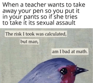 Played me like a minor.: When a teacher wants to take  away your pen so you put it  in your pantS so if she tries  to take it its sexual assault  The risk I took was calculated,  but man,  am I bad at math. Played me like a minor.