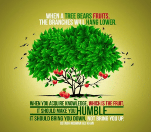 """""""When a tree bears fruits, the branches will hand lower. When you acquire knowledge, which is the fruit, it should make you humble..."""" -Nouman Ali Khan [1512x1512]: """"When a tree bears fruits, the branches will hand lower. When you acquire knowledge, which is the fruit, it should make you humble..."""" -Nouman Ali Khan [1512x1512]"""