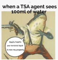 forever-memes:  Terrorism is getting out of control: when a TSA agent sees  100ml of water  Hippity hoppity  your terriorist liquid  is now my property forever-memes:  Terrorism is getting out of control
