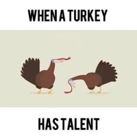 lol im in tears Credit: Will Anderson: WHEN A TURKEY  HAS TALENT lol im in tears Credit: Will Anderson