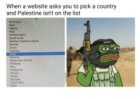North Korea, Nigeria, and Norway: When a website asks you to pick a country  and Palestine isnt on the list  Nicaragua  Niger  Nigeria  Niue  Norfolk Island  North Korea  Northern Mariana Islands  Norway  Oman  Pakistan  Palau  Panama  Papua New Guinea  Paraguay  Peru  Philippines  Pitcairn  Poland  Portugal  Puerto Rico  Qatar <p>(terrorism intensifies)</p>