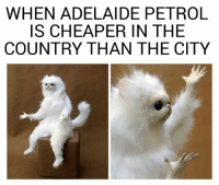 Memes, 🤖, and Cameron: WHEN ADELAIDE PETROL  IS CHEAPER IN THE  COUNTRY THAN THE CITY Sent in by Kym Cameron.   Follow us on Insta @southozmemes #SouthOzMemes