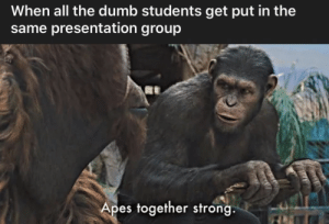 Dumb, Strong, and All The: When all the dumb students get put in the  same presentation group  Apes together strong.