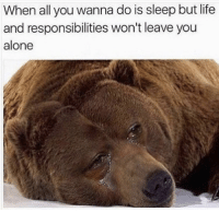 Being Alone, Life, and Sleep: When all you wanna do is sleep but life  and responsibilities won't leave you  alone For Real! 💯 https://t.co/vLQyxFHgDr