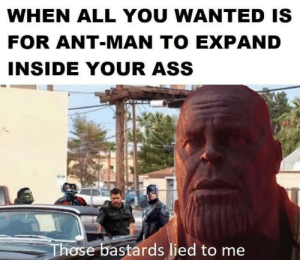 Ass, Memes, and Ant Man: WHEN ALL YOU WANTED IS  FOR ANT-MAN TO EXPAND  INSIDE YOUR ASS  ose bastards lied to me are crossover memes still relevant?