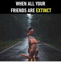 All Your Friends