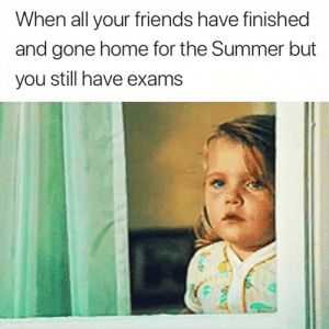 Friends, Summer, and Home: When all your friends have finished  and gone home for the Summer but  you still have exams Take me with you 😭😂